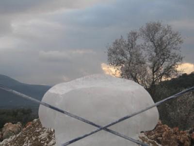 Apoyo del sombreo de la Seta de Piedra, sobre la seta mediana de Piedra