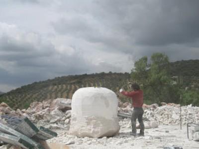 """Gurumelo en la Bolva""""de Piedra"""""""
