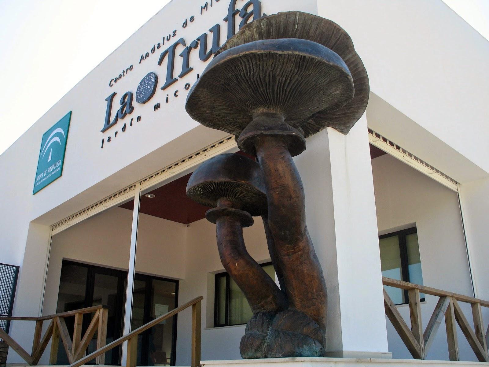 Una de las esculturas monumentales del Jardín Micologico