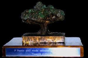 Premios Encina Centenaria