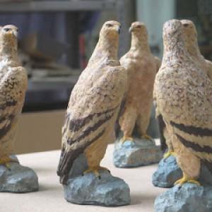 Premios dia mundial de las aves 2008