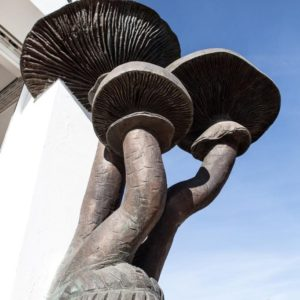 Escultura «Armillarea Mellea» – Seta del Membrillo