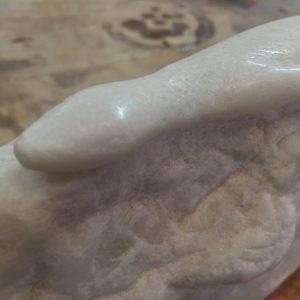 Lagartija de marmol