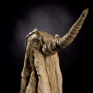 Pulpo Elefante